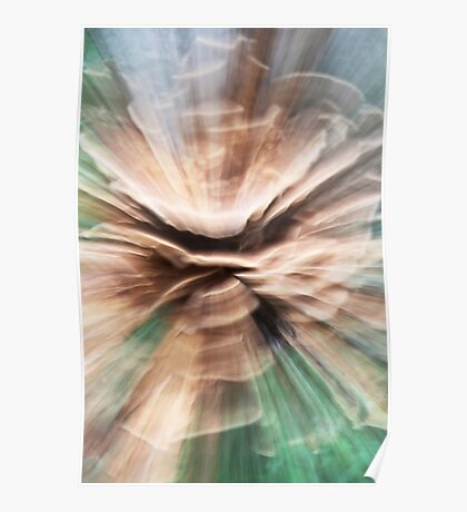 Woodland Abstract #2 Poster