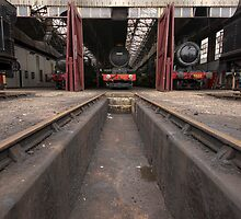 Didcot Railway Yard / Engine Shed by Simon Lawrence