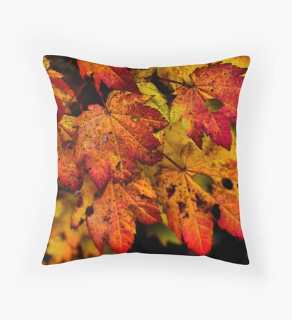 A Real Knockout ~ Leaves Fall Colors ~ Throw Pillow