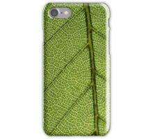 Green Leaf Close Up iPhone Case/Skin