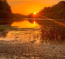 River Quoile at Sunset by Jon Lees