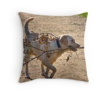 GOLDEN LABRADOR Throw Pillow