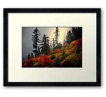Peace Of Mind ~ Fall Colors ~ Framed Print