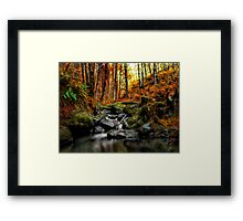 My Little Place ~ Fall Colors ~ Framed Print