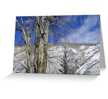 Aspen, Colorado Greeting Card
