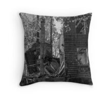 Reclaiming Nature Throw Pillow