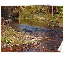 Autumn at the Esopus Creek Poster