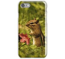 Chipmunk iPhone Case/Skin