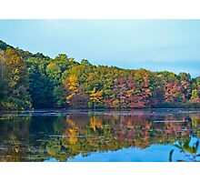 Colors of Fall Photographic Print