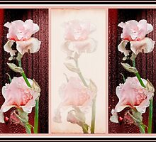 Irises in Pink With Red by MotherNature2