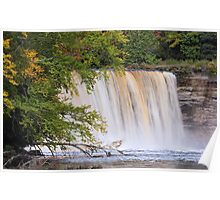 Tahquamenon Falls from the River Poster