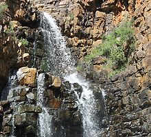 Morialta Falls by sharon wingard