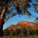 South Australia Countryside, Flinders Rangers by photoj