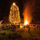 Christmas on Mayne Island by toby snelgrove  IPA