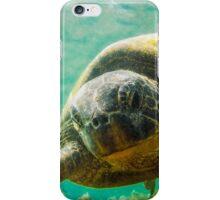 Iphone case - turtle iPhone Case/Skin