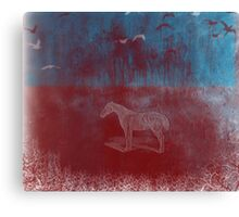 lonely horse in the red field, flying birds, blue, red Canvas Print