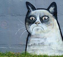 Grumpy Cat by Lenswork99