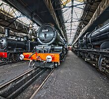 Steam Locomotive HDR VIII by Simon Lawrence