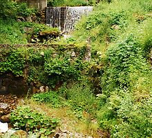 Mill Water Wheel and Stream by jojobob
