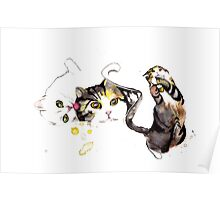 Playful Cats Poster