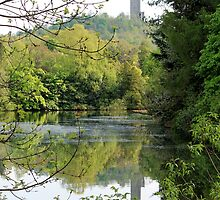 Reflection of the Wallace Monument  by Pat Millar