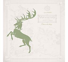 Game of Thrones, House Baratheon, Green Photographic Print