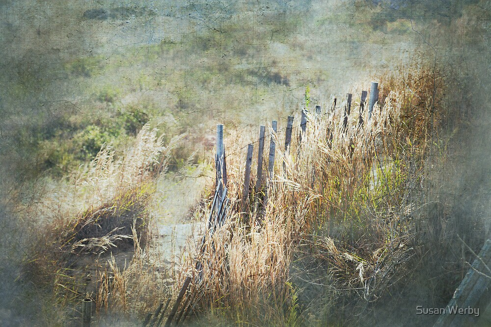 Heavenly Fences by Susan Werby
