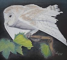 Night Owl by Laurianna