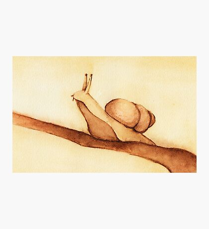 Snail in Watercolor Photographic Print