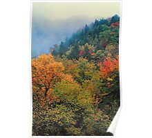 AUTUMN COLOR NEAR THE CHIMNEYS Poster
