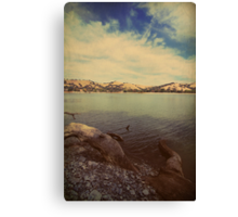 Wading into the Cold Water Canvas Print