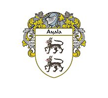 Ayala Coat of Arms/Family Crest Photographic Print