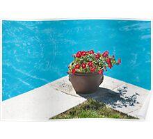 pot in pool Poster