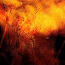 Rosebay Willowherb, October Abstract by Mike  Waldron