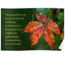 Bore our sins in His Body on the tree ~ 1 Peter 2:24 Poster