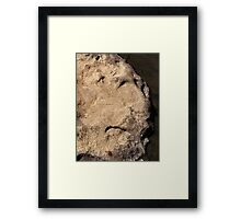 Rocky Is A Hardened Old Man Framed Print