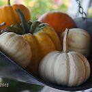 bountiful harvest by Rainydayphotos