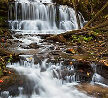 Wagner Falls in Autumn by Kenneth Keifer