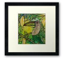 Lush (Rainforest Toucan) Framed Print