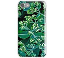 Flowers #7a iPhone Case/Skin