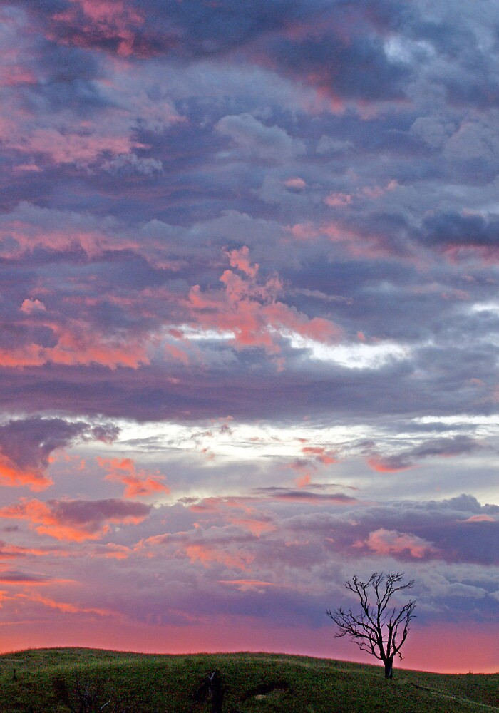 Painted Sky by Harry Oldmeadow