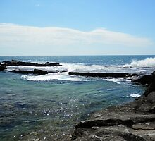 Rocks on the Surf. by FangFeatures