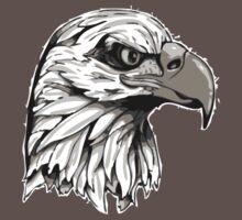 Bald Eagle Head by Massucci
