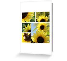 Regent Sunflower 2 Greeting Card
