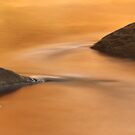 Fall Reflection On River by David Piszczek