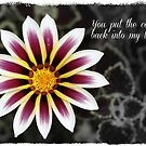 """Add A Little Color"" by Gail Jones"