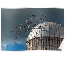 Bird - BIRDS Poster