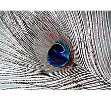 Fracked Feathers Photographic Print