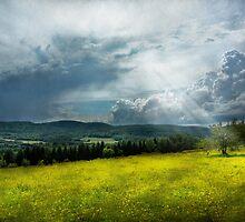 Country - Eternal hope by Mike  Savad