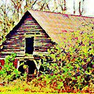Forgotten Barn - A Watercolor by Lisa Taylor